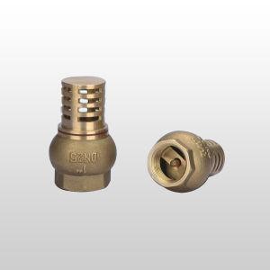 Brass Check Valve (WSD-7012)