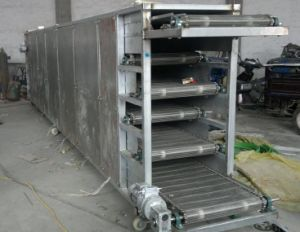 dryer Professional briquette mesh belt dryer tunnel type dryer pictures & photos