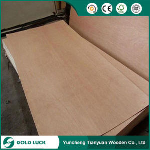 China Low Price 3mm 6mm 9mm Packing Plywood pictures & photos