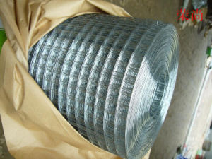 High Quality Hot Sale Welded Wire Mesh pictures & photos