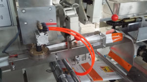 Automatic Instant Noodle Packing Machine pictures & photos
