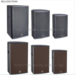 Best Selling 30W Sound Outdoor Subwoofer Power Amplifier LED Display pictures & photos