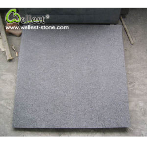 China Natural Stone Flamed Finish G684 Black Granite 600X600 pictures & photos