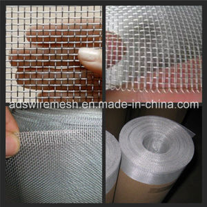 Aluminium Alloy Window Screen (14*14 16*16 18*18) pictures & photos