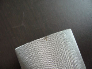 Ss Wire Mesh Filter Cartridge pictures & photos
