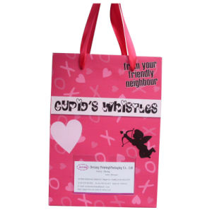 Paper Shopping Bag with Handle and Logo (SW124) pictures & photos