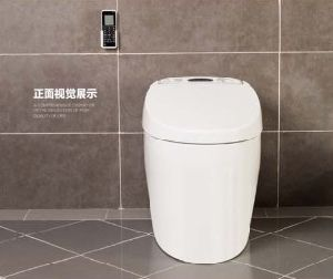 Hot Selling Luxury Intelligent Toilet (W1509) pictures & photos