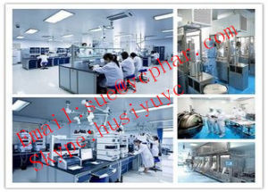 Local Anesthesia Legal Benzocaine / Anesthetic (local) Powder pictures & photos