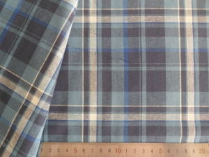 Green/Ivory/Grey/Black Checks 125GSM 100% Cotton Yarn Dyed Fabric pictures & photos