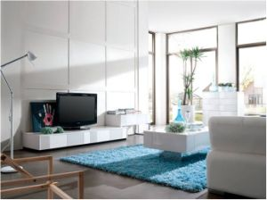 High Glossy Living Room Furniture Modern TV Stand (WLF-TV010)