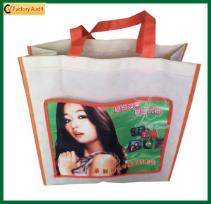 Fashion Designs Recycled Gift Shopping Bag Laminated Bag (TP-SP165) pictures & photos