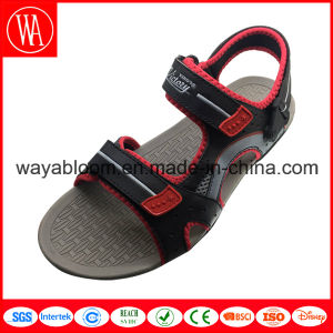 Fashion New Summer Beach Sandals for Men and Women pictures & photos