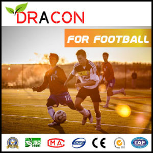 Five-Person Football Artificial Grass (G-5001) pictures & photos