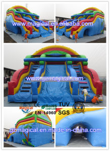 Inflatable Large Water &Dry Slide for Pool (MIC-938) pictures & photos