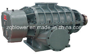 Big Size High Flow Biogas Roots Blower (ZL101WD) pictures & photos