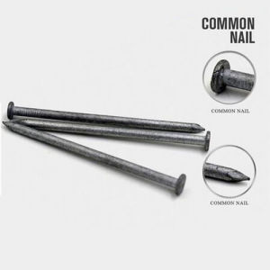 Professional Price of Common Iron Nail From China pictures & photos