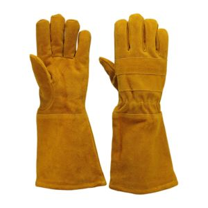 Leather Working Gloves for Labor Safety pictures & photos