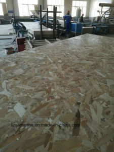 Building Materials OSB 15mm Environmental Glue pictures & photos