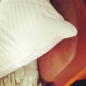 Luxury Goose Down and Feather Pillow pictures & photos