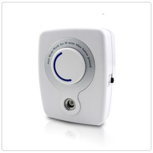 50mg Portable Ozone Air Purifier At50 pictures & photos