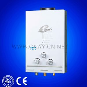 Gas Flowing Water Heater with Fashion Design 2013