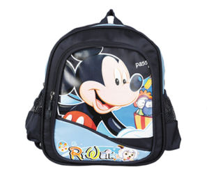 2014 Fation Style School Bag for School (FSE-1001)