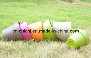 Flower/Plant Pot/Bamboo Fiber/Plant Fiber/Vase/Garden/Promotional Gifts/Home Decoration/Garden Decorations/Natural Bamboo Fiber Biodegradable Pots (ZC-F20211)
