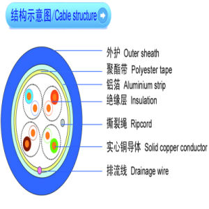 Hot Sale! High Quality Cat5e FTP Solid Copper Cable pictures & photos
