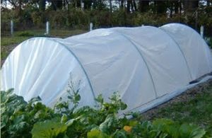 China Supplier Anti Insect Net for Greenhouse pictures & photos