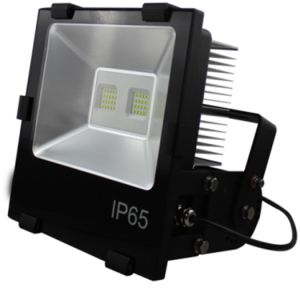 Philipe 3030 LED 85-240V IP65 120W LED Outdoor Floodlight pictures & photos