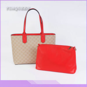 Fashion Ladies Elegant Design Leather Handbag (DX-HAG3113)