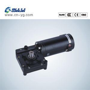 Ningbo New Guanlian DC Gear Motor
