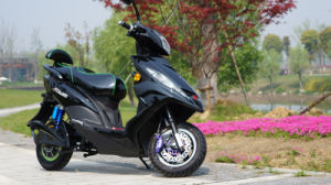 Hot Sale Electric Scooter 1000W E Motorcycle for Adults pictures & photos