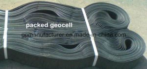 Geocell Used in Protection of Steep Slope pictures & photos