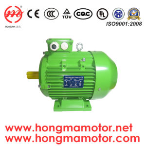 Ie3 Aluminum/Cast Iron Housing Three Phase Induction Motor pictures & photos