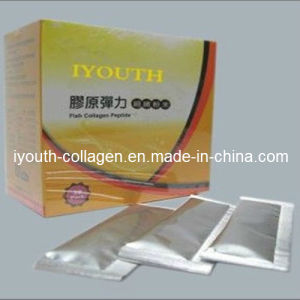 GMP, Top Collagen, 100% Natural Iyouth Fish Collagen Peptide Powder, Health Food pictures & photos