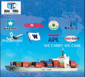 One-Stop Shipping Logistics Service for Mexico Shipments