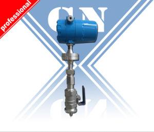 LPG Gas Flow Meter (CX-TMFM) pictures & photos
