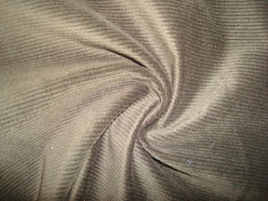 Twill Velvet pictures & photos