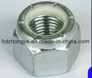 Customized Special Nuts/ Hex Nut pictures & photos