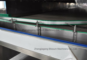 Hot Sale15000bph Hot Fill Bottle Juice Making Plant pictures & photos