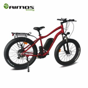 2017 Cheap Factory Price 26inch Fat Tire Mountain Electric Bike with Hydraulic Brake pictures & photos