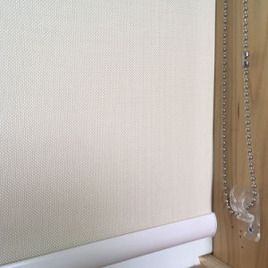 Roller Shade with Fascia for Window Treatment pictures & photos
