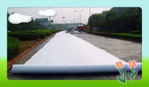 Polyester Filament Spunbond Non-Woven Geotextile pictures & photos