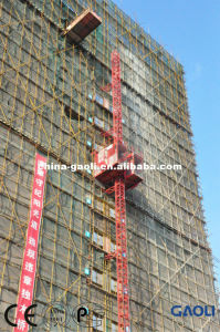 Popular Sale Fast Electric Motor Building Elevator with CE & GOST pictures & photos