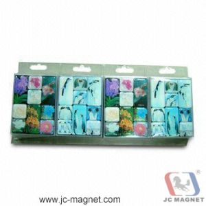 High Quality 3D Resin Refrigerator Magnets pictures & photos