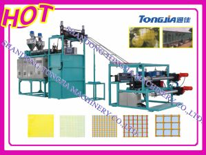 Plastic Horticulture Net (Mesh) Making Machine (JG-FW) pictures & photos