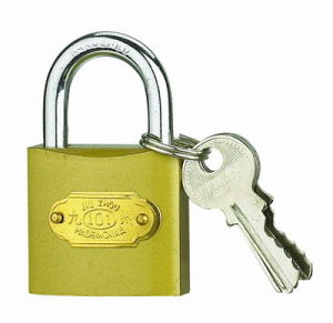 Pull Imitate Brass Padlock W/Brass Cylinder (BT365) pictures & photos