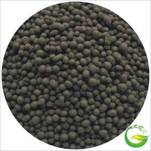 Organic Fertilizer Humic Acid NPK Fertilizer/Granular Humic Acid pictures & photos