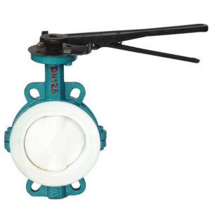 Risultati immagini per ptfe lined butterfly valves